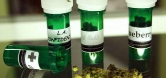 L'activation de récépteurs cannabinoïdes permet de lutter contre le virus du Sida