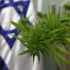 Video: La révolution du cannabis médical en Israël