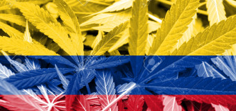 La Colombie légalise le cannabis à usage médical.