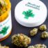 USA: Le NIH investit 3 millions de dollars pour étudier l'efficacité du Cannabis dans le traitement de la douleur