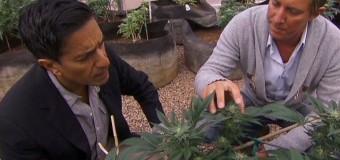 Le docteur Sanjay Gupta reconnaît s'être trompé sur le cannabis