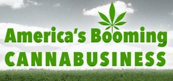 Reportage sur l'essor du marché US du cannabis thérapeutique