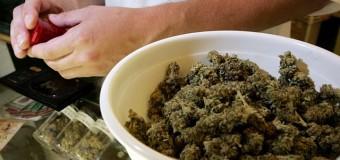 Canada: simplification de l'accès au cannabis thérapeutique pour le secteur privé