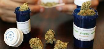 Vidéo: L'industrie du cannabis en pleine expansion en Silicon Valley