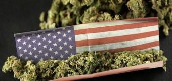 Etats-Unis: 5 nouveaux Etats devraient bientôt légaliser le cannabis à usage médical ou récréatif